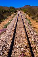 Train tracks of the Chihuahua al Pacifico Railroad (Chepe) near El Fuerte, Mexico