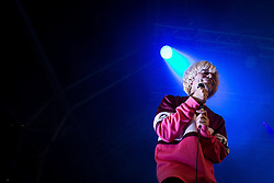 "© Licensed to London News Pictures . 04/07/2015 . Manchester , UK . The Charlatans perform at the Castlefield Bowl as part of the "" Summer in the City "" festival in Manchester. Photo credit : Joel Goodman/LNP"
