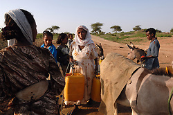 Tiblits gathers water at a well near her home using her donkey in Barentu, Eritrea