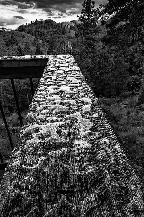 Deck railing with pooled rain, Methow Valley, Washington, USA