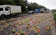 DINGAN COUNTY, CHINA - MAY 05: (CHINA OUT) <br /> <br /> Two Tons Watermelons Spread On Highway After A Car Accident<br /> <br /> Two tons watermelons spread on a highway as a track turns over due to slippery road on a rainy day on May 5, 2014, in Dingan County, Hainan Province of China. <br /> ©Exclusivepix