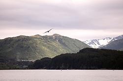 USA ALASKA KODIAK 27JUN12 - US Coast Guard plane takes off from Kodiak, Alaska....Photo by Jiri Rezac / Greenpeace