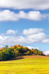 Love the baby blue skies and puffy clouds on the golden autumn landscapes this time of year