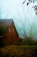 One of Bill White's barns captured early on a November morning.