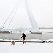 Nederland Rotterdam 21 december 2007 ..Man laat hond uit op een besneeuwd Noordereiland op de achtergrond de  Erasmusbrug ...Foto David Rozing