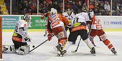 02.10.2014, Stadthalle, Klagenfurt, AUT, EBEL, EC KAC vs Dornbirner Eishockey Club, 7. Runde, im Bild David Madlaner (Dornbirner Eishockey Club, #31), Patrick Harand (EC KAC, #16), Garnet Exelby (Dornbirner Eishockey Club, #27), Martin Schumnig (EC KAC, #28) Adam Miller (Dornbirner Eishockey Club, #40) // during the Erste Bank Icehockey League 7th round match betweeen EC KAC and Dornbirner Eishockey Club at the City Hall in Klagenfurt, Austria on 2014/10/02. EXPA Pictures © 2014, PhotoCredit: EXPA/ Gert Steinthaler