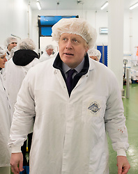 "© Licensed to London News Pictures. 09/03/2015. Chessington, UK The Mayor of London, Boris Johnson, marks the first day of Apprentice Week by confirming plans for a new scheme that will create thousands of new apprenticeship opportunities in London. The Mayor met apprentices working at the New England Seafood fish factory and tried his hand at tuna loining, salmon filleting and ""pin-boning"" – the art of removing bones using tweezers. . Photo credit : Stephen Simpson/LNP"