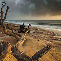 This stretch of coast is littered with the remains of the trees that have fallen from the eroding cliffs above. Never had any luck with light here before but had a great sunrise followed by some lovely warm light to complent the sand and skeletal wood.