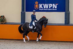 Van Silfhout Diederik, NED, Impression<br /> Fotodag KWPN Hengstenkeuring 2021<br /> © Hippo Foto - Dirk Caremans<br /> 06/01/2021