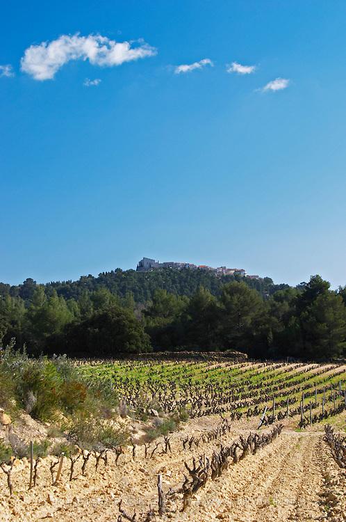 View over the vineyard in spring, goblet training, the Le Castelet village on a hill top in the background. Grenache and Mourvedre Domaine de la Tour du Bon Le Castellet Bandol Var Cote d'Azur France
