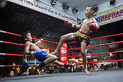 Jan 24, 2014 - Chiang Mai, Thailand - <br /> <br /> Nine Year Old Muay Thai Fighter<br /> <br /> Focus is knocked down by his opponent in the final round of their fight at the Thapae Muay Thai Stadium in Chiang Mai. PETCHFOGUS SITTHAHARNAEK, 9, aka Focus is the top fighter for his age and weight in Chiang Mai. He has begun fighting older, heavier opponents to continue to improve his skills. Fighters are typically paid 1000 baht (0) per fight. <br /> ©Exclusivepix