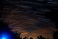 Star Trails Looking South. Composite of 112 images taken between 01:00 and 01:59 with a Nikon D3 camera and 24 mm lens (ISO 400, 24 mm, f/4, 30 sec).