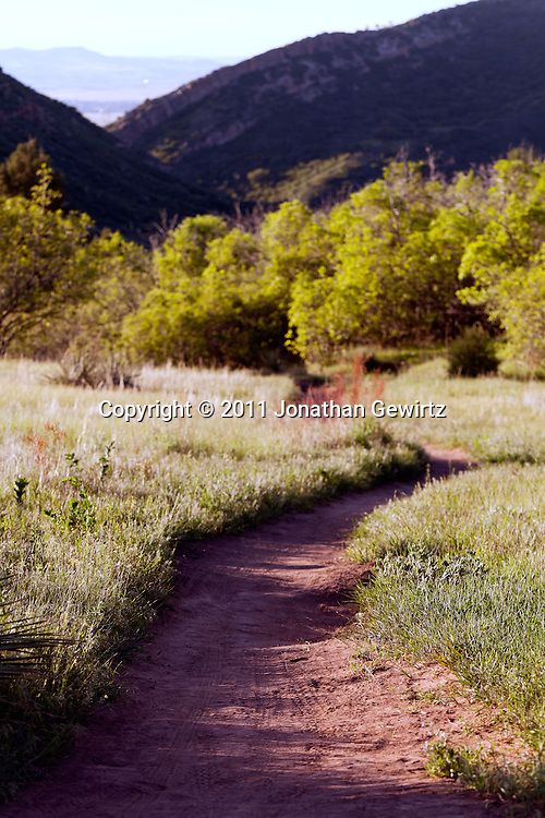 A bike and walking trail in the South Valley Park Ken-Caryl Ranch Open Space in Colorado at dawn. WATERMARKS WILL NOT APPEAR ON PRINTS OR LICENSED IMAGES.