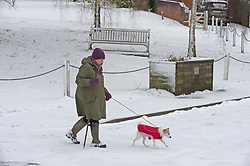 © Licensed to London News Pictures 08/02/2021.        Otford, UK. An elderly lady walking her dog in Otford, Kent. The Met Office has warned of more freezing cold snowy weather to come with yellow and amber alerts in place for London, Kent and the South East. Photo credit:Grant Falvey/LNP