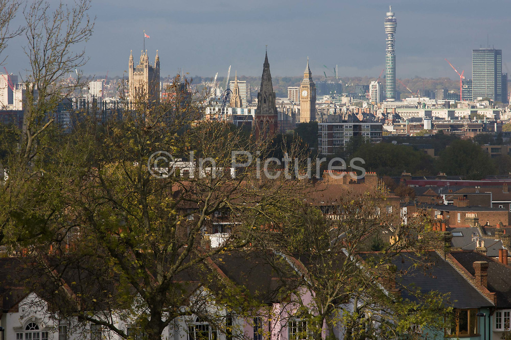 100 year-old ash trees seen overlooking south London towards Westminster and the Houses of Parliament. Stretching into the distance, as we look northwards are the tall towers of the Palace of Westminster and Queen Elizabeth Towert (Big Ben) - the seats of power and government of the United Kingdom. It is autumn and leaves are falling from the ash trees in the foreground that a century old but now in jeopardy from ash dieback disease (Chalara fraxinea) which is currently claiming the lives of Britain's young and old ash trees.