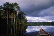 Lake Salvador<br />Amazon Rain Forest, PERU  South America