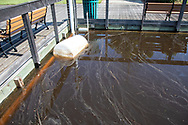 Polluted water in Georgetown , South Carolina following Hurricane Florence.