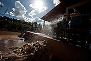 Patos de Minas_MG, Brasil...Cacharia em Patos de Minas que fabrica aguardente para exportacao. Na foto trabalhador molhando bagaço da cana de acucar...Cachacaria in Patos de Minas, which manufactures cachaca for export. In the picture worker watering sugar cane bagasse...Foto: LEO DRUMOND / NITRO