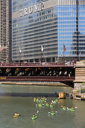 Kayakers on the Chicago River with the DuSable Bridge and Trump Tower on a summers day in Chicago, Illinois, USA