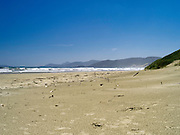 View of the beach at Mason Bay, Stewart Island (Rakiura), New Zealand