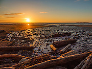 Sunset shines on driftwood and Spencer Creek, at Beverly Beach State Park Campground, Newport, Oregon coast, USA.