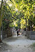 Man walking on a rural, dirt, palm tree lined path in Myanmar