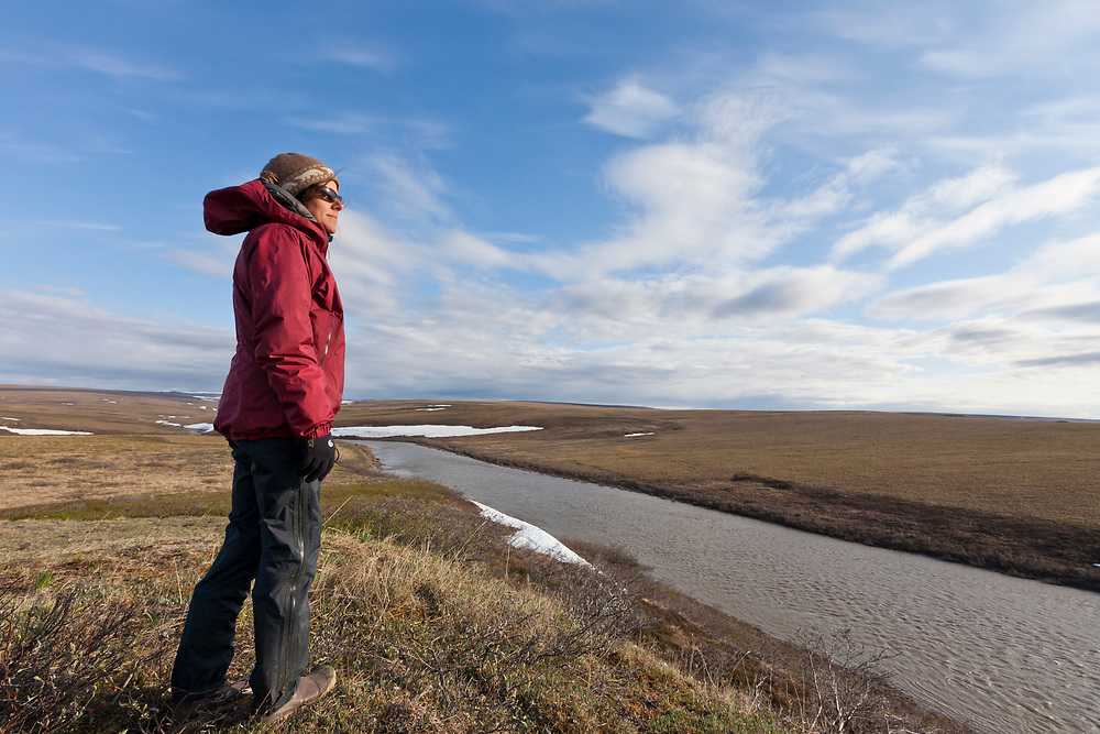 National Petroleum Reserve-Alaska (NPR-A), a rafter looks over the muddy Utukok River, during a spring float trip through NPR-A