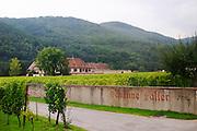 vineyard the winery dom faller weinbach kaysersberg alsace france