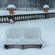 It had snowed all the previous day.  I was amused to see how the snow conformed to the contours on this wooden bench
