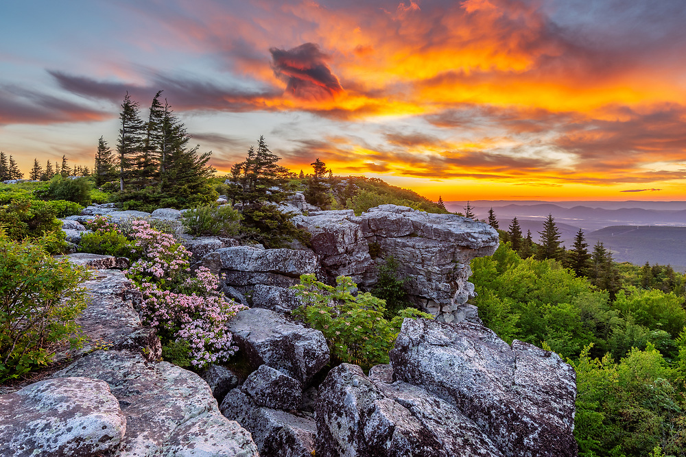 Pre-dawn light fills the sky, brushing the clouds with vibrant oranges above the mountains from Bear Rocks Preserve on an early spring morning in West Virginia.