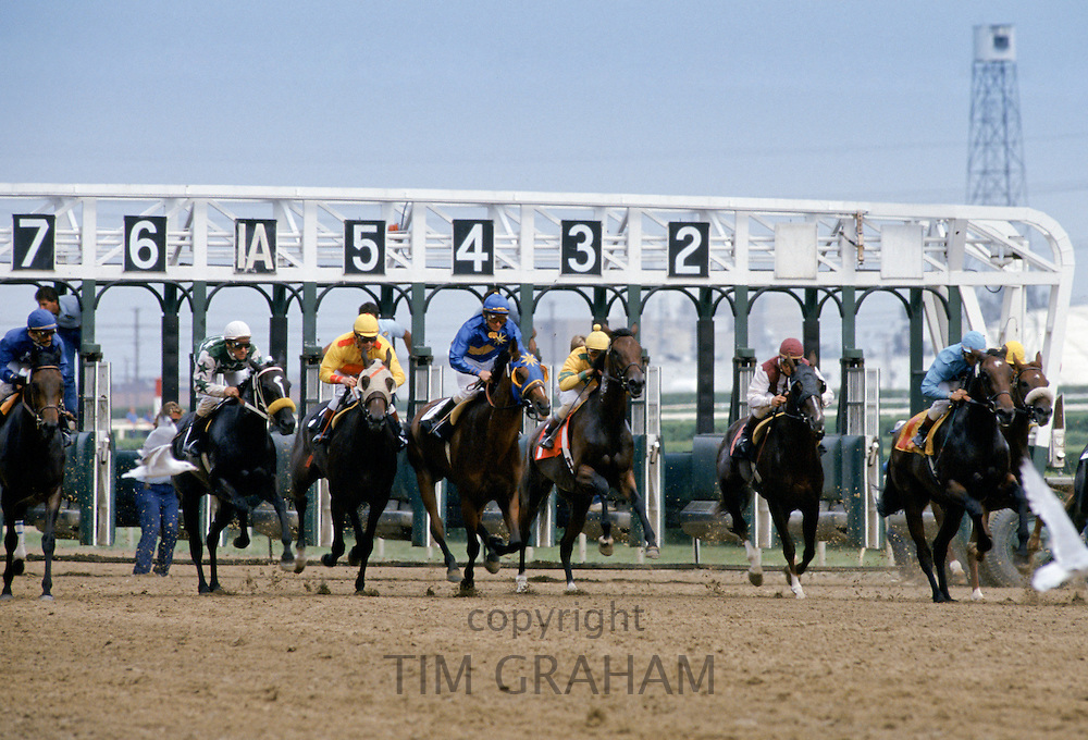 Horseracing at Woodbine Racecourse at Coburg in Canada