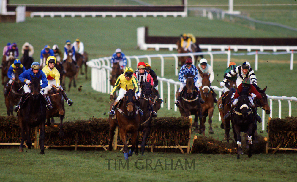 National Hunt Festival horseracing at Cheltenham Races, England, United Kingdom.
