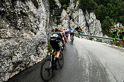 Cameron Meyer (AUS) of Mitchelton - Scott during 4th Stage of 26th Tour of Slovenia 2019 cycling race between Nova Gorica and Ajdovscina (153,9 km), on June 22, 2019 in Slovenia. Photo by Vid Ponikvar / Sportida