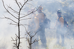 Firefighters working controlled burn on the Matthews Prairie, owned by the Native Prairies Association of Texas. Farmersville, Texas, USA.