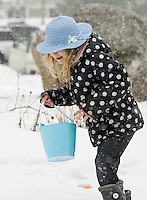 "Adding a touch of ""Easter Egg Blue"" Destiny Elliott searches for eggs in the snow during the Weirs Community Park Easter Egg Hunt Saturday morning.  (Karen Bobotas/for the Laconia Daily Sun)"