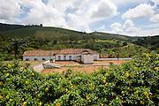Varginha_MG, Brasil.<br /> <br /> Fazenda historica, a qual abriga o Museu do Cafe em Varginha, Minas Gerais.<br /> <br /> Historic farm, which houses the Museum Cafe in Varginha, Minas Gerais.<br />  <br /> Foto: RODRIGO LIMA / NITRO.
