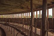 Milking Stanchions, First Floor, Starke Round Barn Near Red Cloud, Nebraska, Basement, Windows, Concrete, dairy farming, animal agriculture