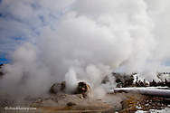 Grotto Geyser erupts in Yellowstone National Park in winter