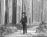"""0405-B01 (detail from large plate) Photographer J. F. Ford in old growth timber.  Photographer's caption: """"Fir Timber, Seattle W"""" """"By J. F. Ford"""""""