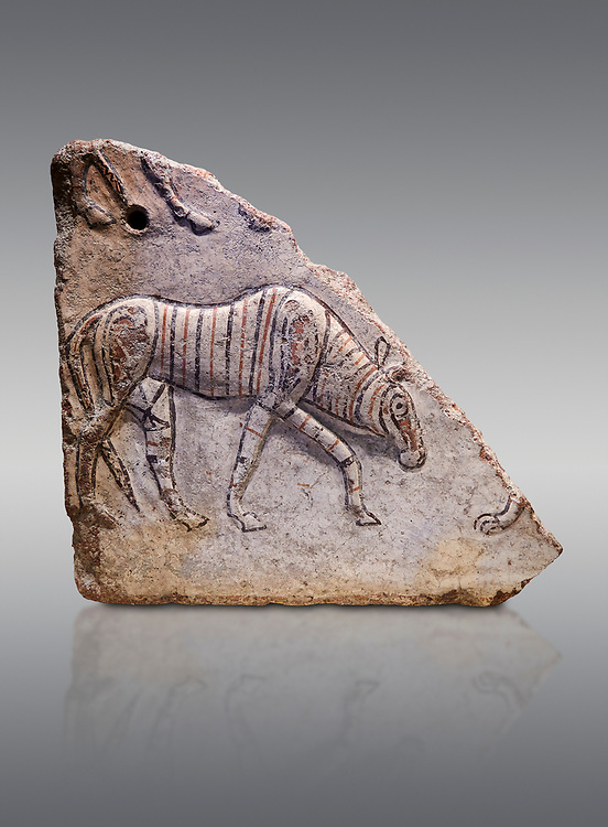 Phrygian relief fragment depicting a walking animal. 8th-7th century BC . Çorum Archaeological Museum, Corum, Turkey .<br /> <br /> If you prefer to buy from our ALAMY PHOTO LIBRARY  Collection visit : https://www.alamy.com/portfolio/paul-williams-funkystock/phrygian-antiquities.html (TIP - Refine search by adding a suject or background colour as well).<br /> <br /> Visit our CLASSICAL WORLD HISTORIC SITES PHOTO COLLECTIONS for more photos to download or buy as wall art prints https://funkystock.photoshelter.com/gallery-collection/Classical-Era-Historic-Sites-Archaeological-Sites-Pictures-Images/C0000g4bSGiDL9rw