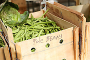 Locally grown pole beans on display at the Farmers Market along Main Street in downtown Greenville, South Carolina.