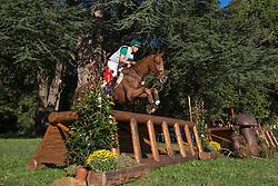Vitkauskas Aistis (LIT) - 666 <br /> Cross country  6 years old horses<br /> Mondial du Lion - Le Lion d'Angers 2014<br /> © Dirk Caremans<br /> 18/10/14