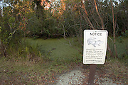 Sign in the Fakahatchee Strand State Park warning visitors of the dangers of attracting or molesting American Alligators (Alligator mississippiensis).