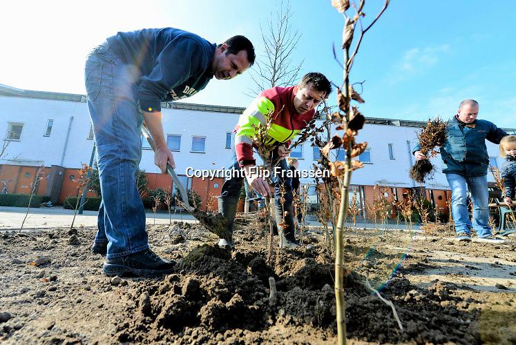 Nederland, Elst, 12-3-2016NL Doet, In Westeraam wordt een haag aangelegd door buurtbewoners.FOTO: FLIP FRANSSEN