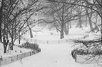 Overnight, Central Park was transformed into a magical world of winter; Dec. 17, 2020.