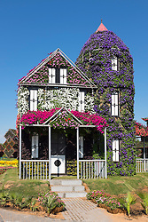 House covered in flowers at Miracle Garden the world's biggest flower garden in Dubai United Arab Emirates