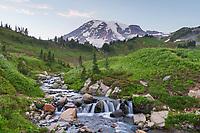 Edith Creek Mount  Rainier National Park