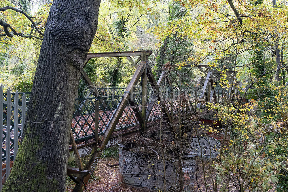 A woodland landscape of the iron Bridge that spans the former Victorian railway line that took visitors to Crystal Palace, in Sydenham Hill Woods, on 25th October 2020, in London, England. The Nunhead to Crystal Palace (High Level) railway once passed through the Wood, and the track bed can be followed to a disused and closed tunnel which is now a registered bat roost.