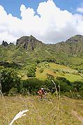 mountain-bike,cross-country,velo,VTT,bicyle,sport,outdoor