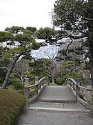 Japan, Tokyo Japanese Garden